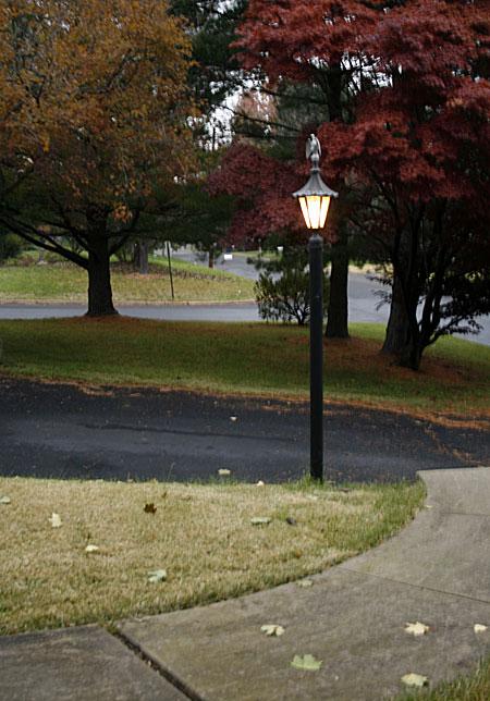 lamp-post.jpg