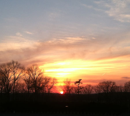 pams-sunset